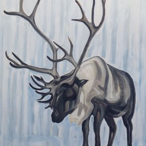 Nathalie Letulle, ARCTIC CARIBOU